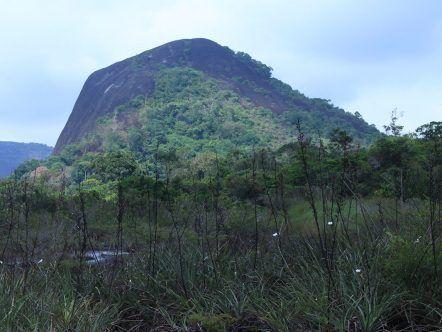 MAVECURE: RUTA RIO ATABAPO