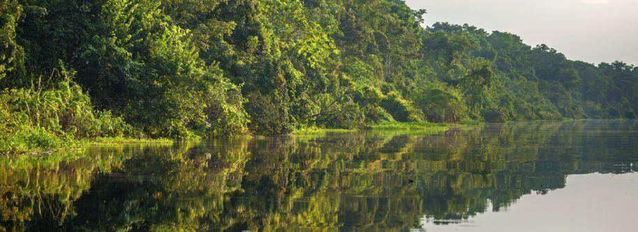 GRAN AMAZONAS